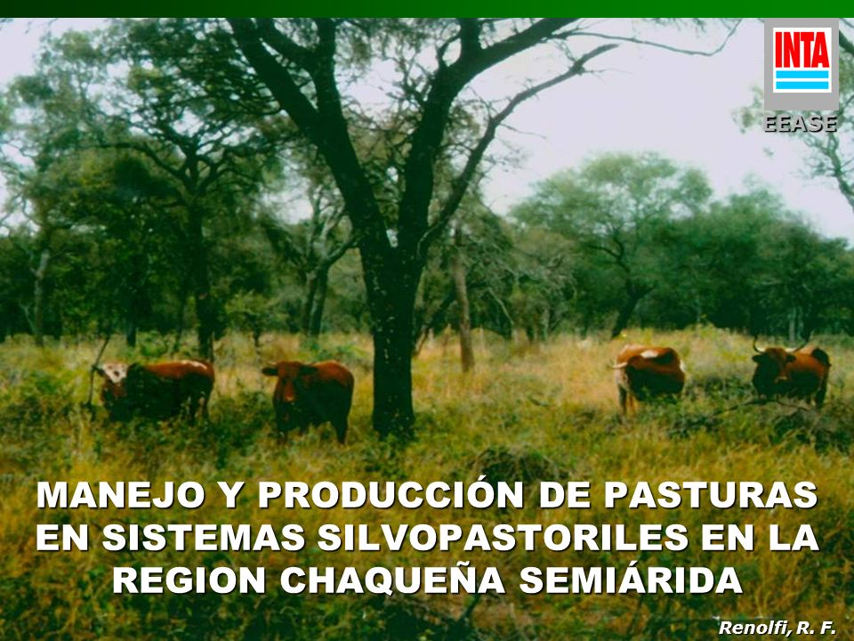 EEASE MANEJO Y PRODUCCIÓN DE PASTURAS EN SISTEMAS SILVOPASTORILES EN LA REGION CHAQUEÑA SEMIÁRIDA.