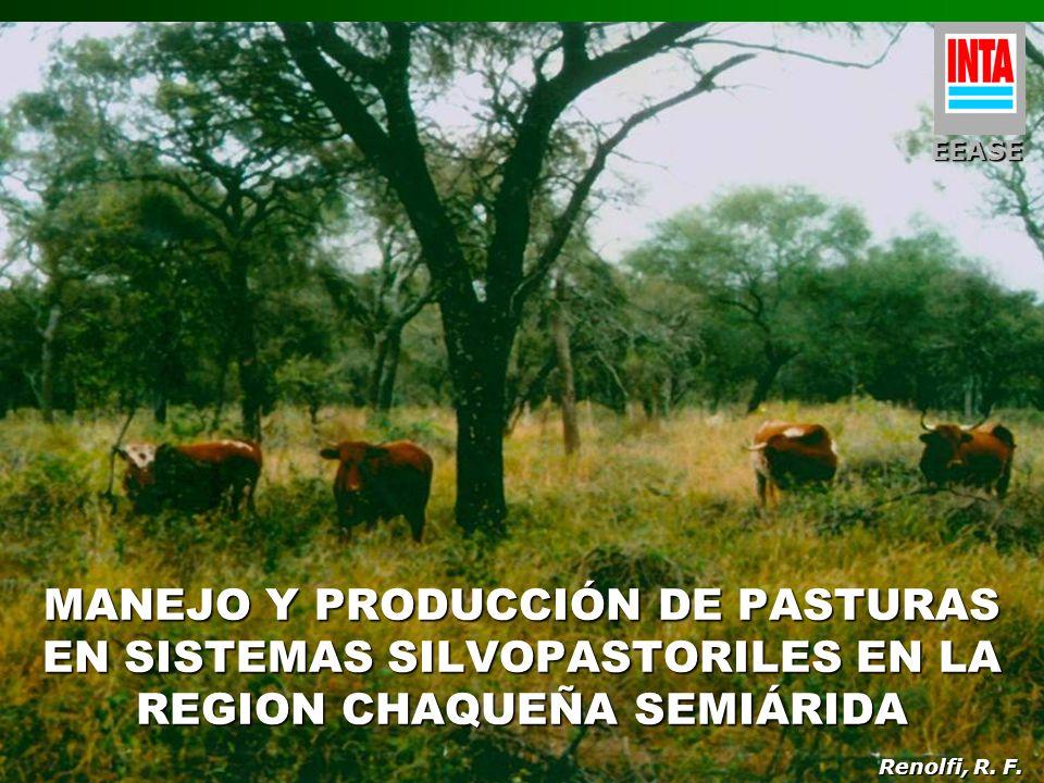 EEASEMANEJO Y PRODUCCIÓN DE PASTURAS EN SISTEMAS SILVOPASTORILES EN LA REGION CHAQUEÑA SEMIÁRIDA.