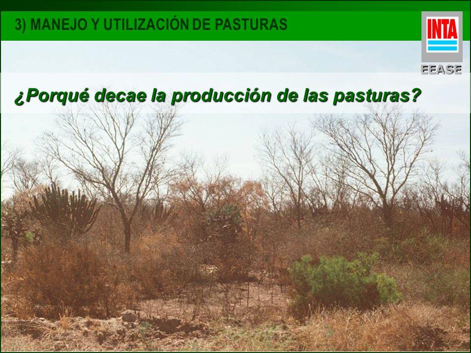¿Porqué decae la producción de las pasturas
