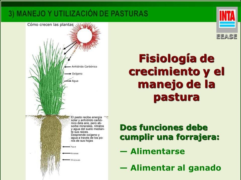 Fisiología de crecimiento y el manejo de la pastura