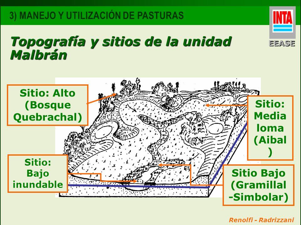 Sitio: Media loma (Aibal) Sitio Bajo (Gramillal -Simbolar)