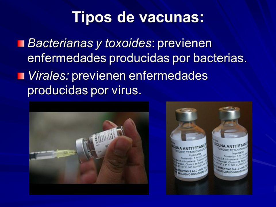 Tipos de vacunas: Bacterianas y toxoides: previenen enfermedades producidas por bacterias.