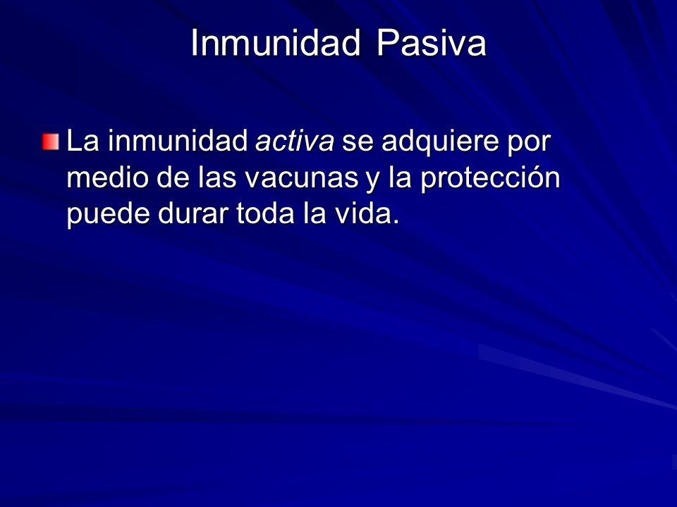 Inmunidad Pasiva La inmunidad activa se adquiere por medio de las vacunas y la protección puede durar toda la vida.