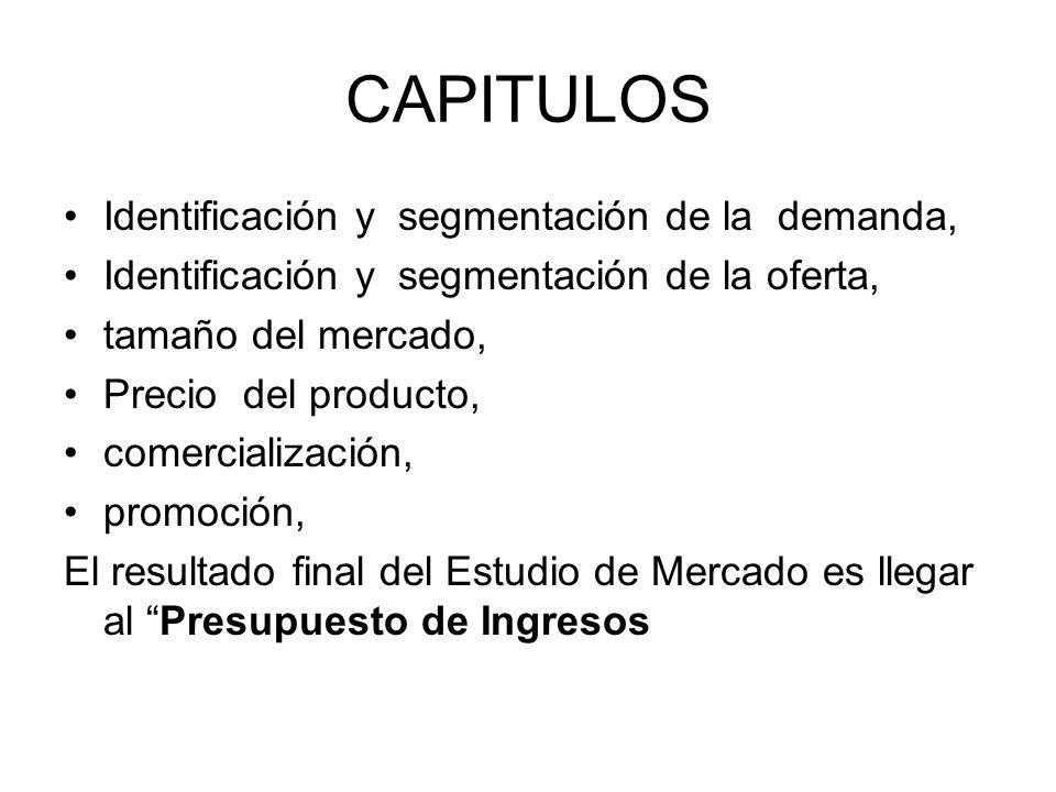CAPITULOS Identificación y segmentación de la demanda,