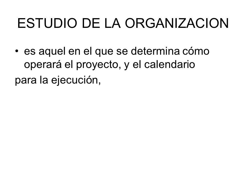 ESTUDIO DE LA ORGANIZACION
