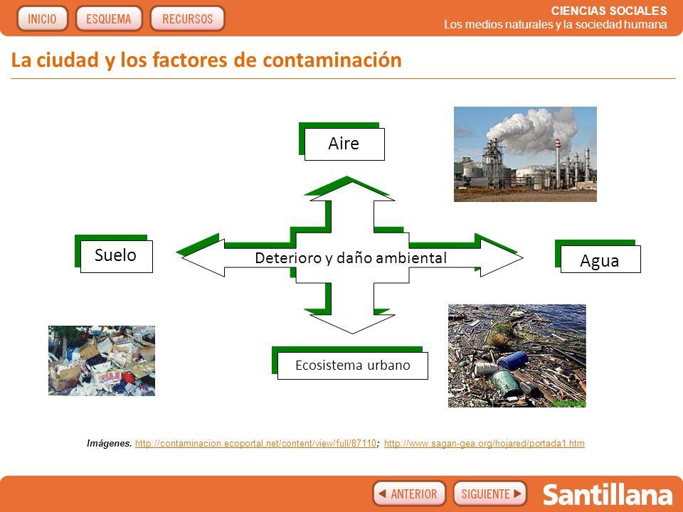 La ciudad y los factores de contaminación