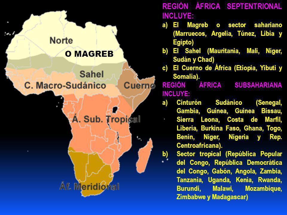 REGIÓN ÁFRICA SEPTENTRIONAL INCLUYE: