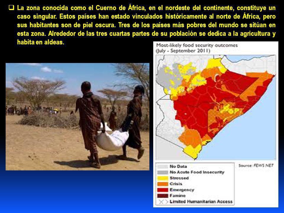 La zona conocida como el Cuerno de África, en el nordeste del continente, constituye un caso singular.