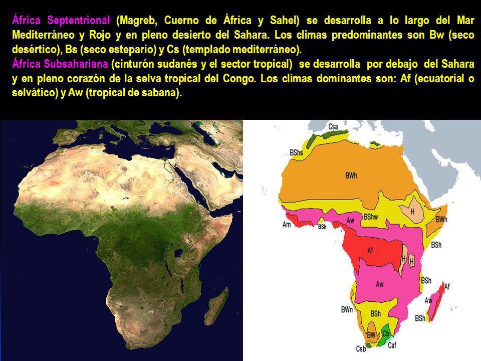 África Septentrional (Magreb, Cuerno de África y Sahel) se desarrolla a lo largo del Mar Mediterráneo y Rojo y en pleno desierto del Sahara. Los climas predominantes son Bw (seco desértico), Bs (seco estepario) y Cs (templado mediterráneo).