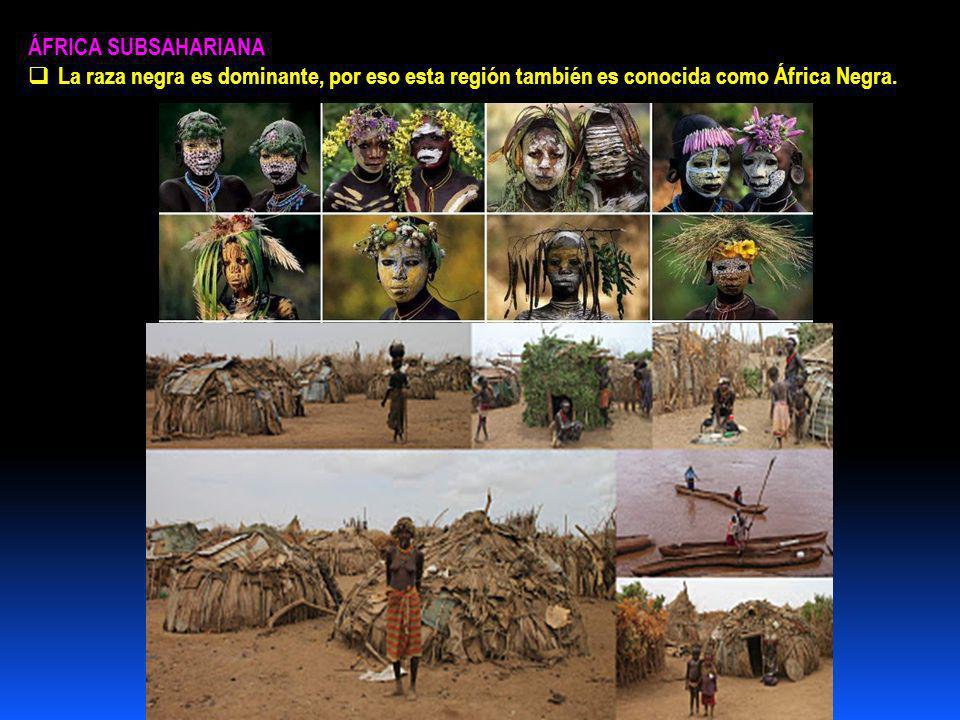 ÁFRICA SUBSAHARIANA La raza negra es dominante, por eso esta región también es conocida como África Negra.