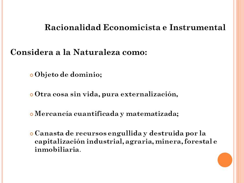 Racionalidad Economicista e Instrumental