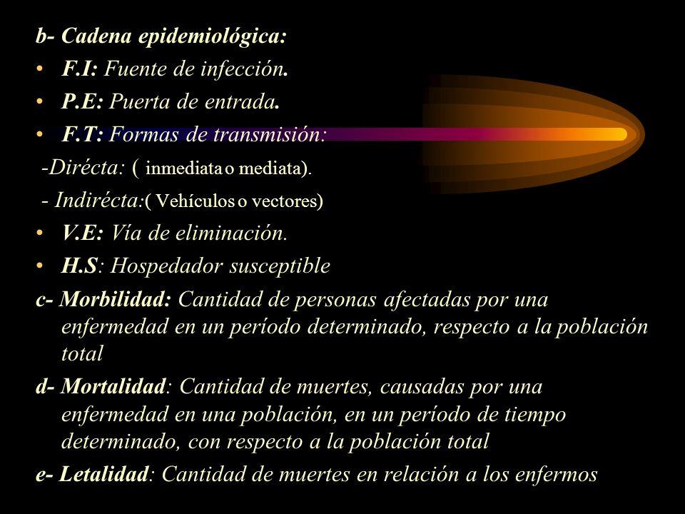 b- Cadena epidemiológica: