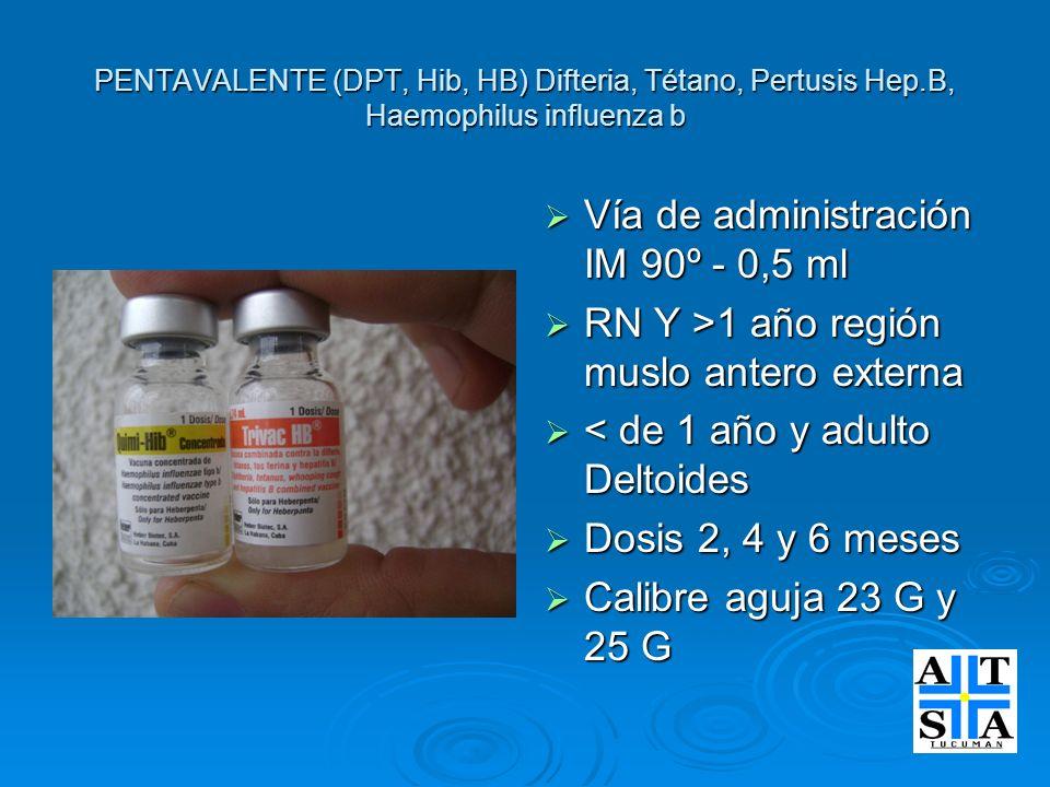 Vía de administración IM 90º - 0,5 ml