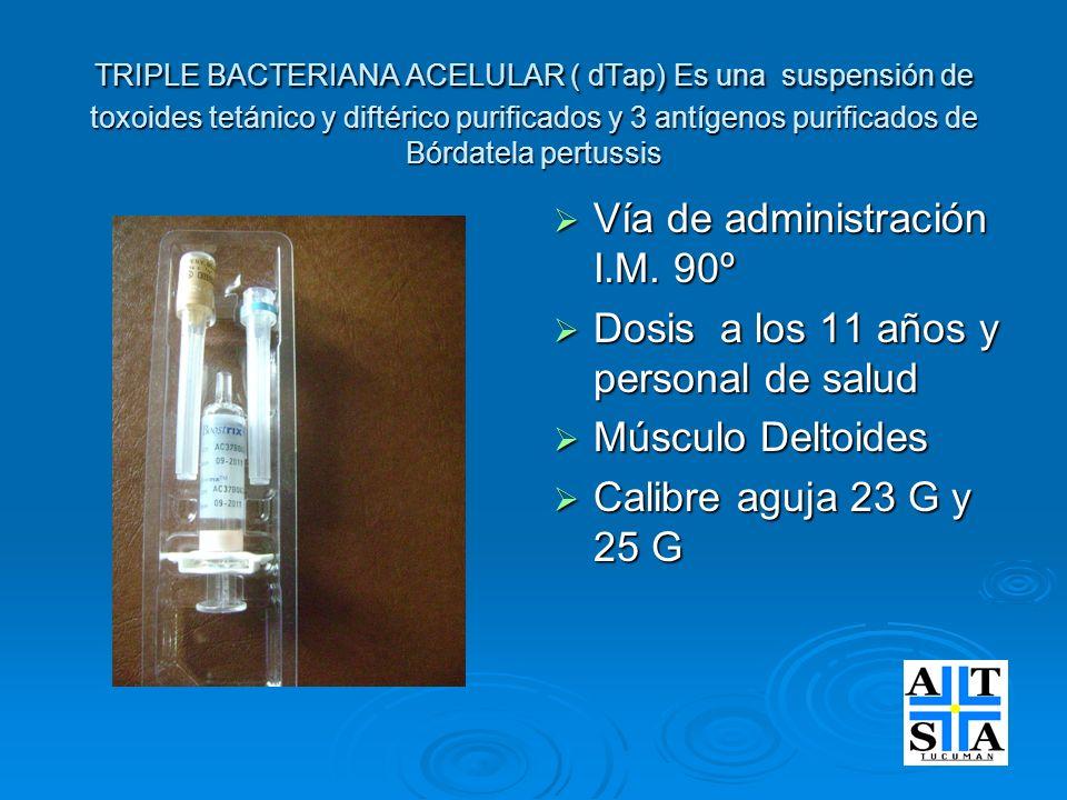 Vía de administración I.M. 90º Dosis a los 11 años y personal de salud