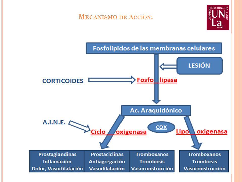 Mecanismo de Acción: