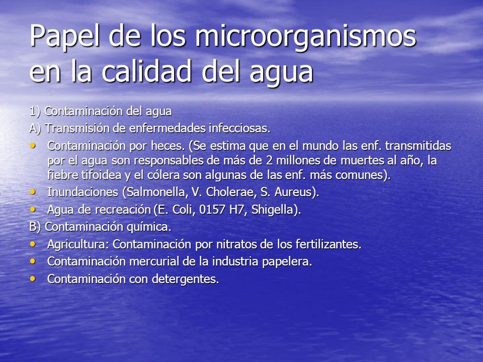 Papel de los microorganismos en la calidad del agua