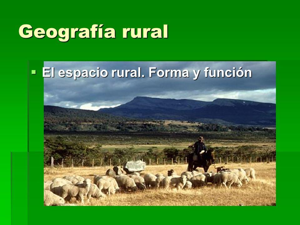 Geografía rural El espacio rural. Forma y función