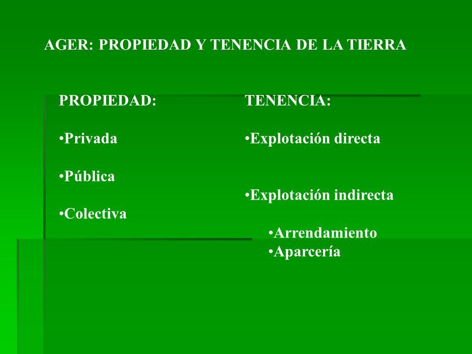 AGER: PROPIEDAD Y TENENCIA DE LA TIERRA