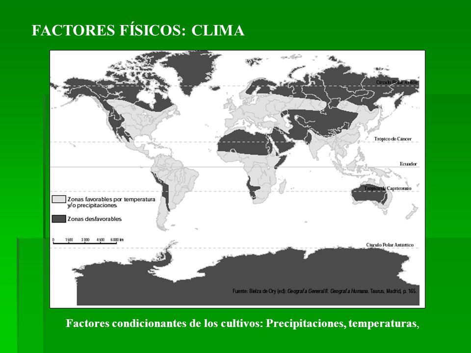 FACTORES FÍSICOS: CLIMA