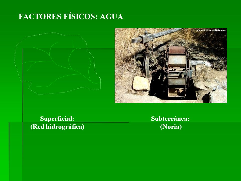 FACTORES FÍSICOS: AGUA