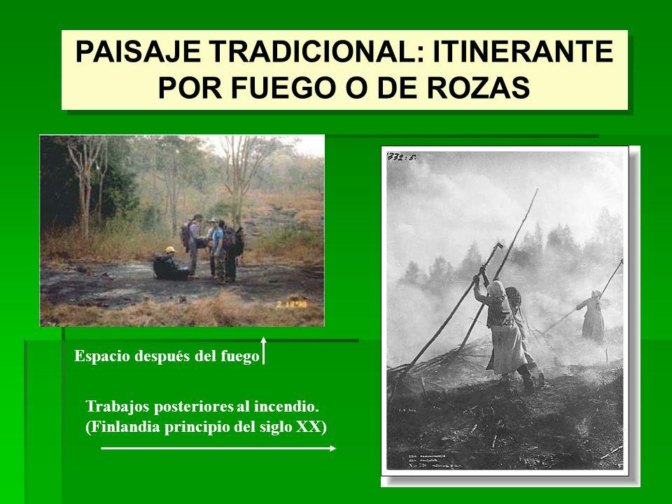 PAISAJE TRADICIONAL: ITINERANTE POR FUEGO O DE ROZAS