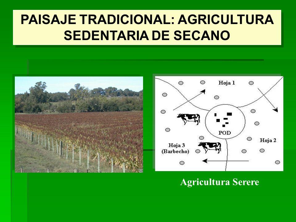 PAISAJE TRADICIONAL: AGRICULTURA SEDENTARIA DE SECANO