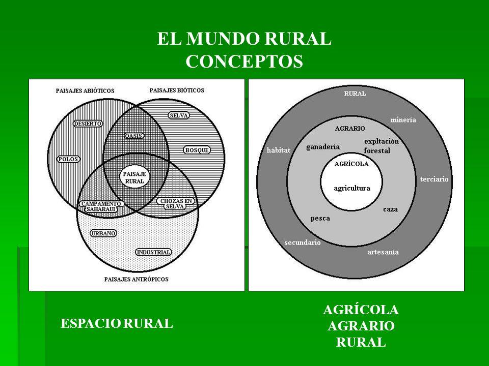 EL MUNDO RURAL CONCEPTOS