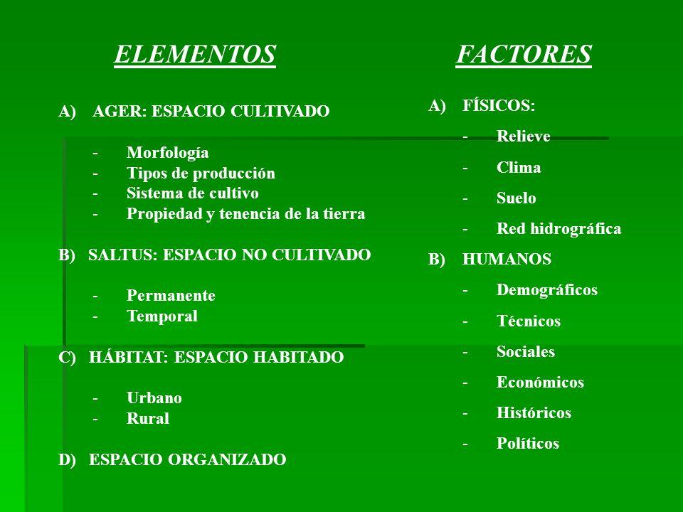 ELEMENTOS FACTORES FÍSICOS: AGER: ESPACIO CULTIVADO Relieve Morfología