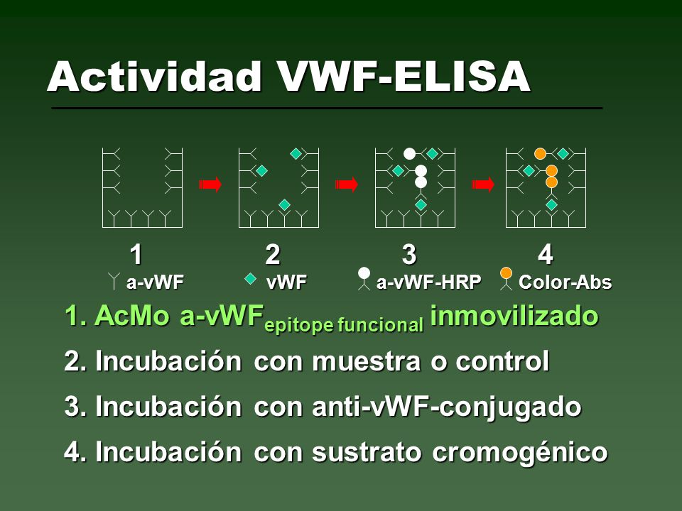 Actividad VWF-ELISA1 2 3 4. a-vWF. vWF. a-vWF-HRP. Color-Abs. 1. AcMo a-vWFepitope funcional inmovilizado.