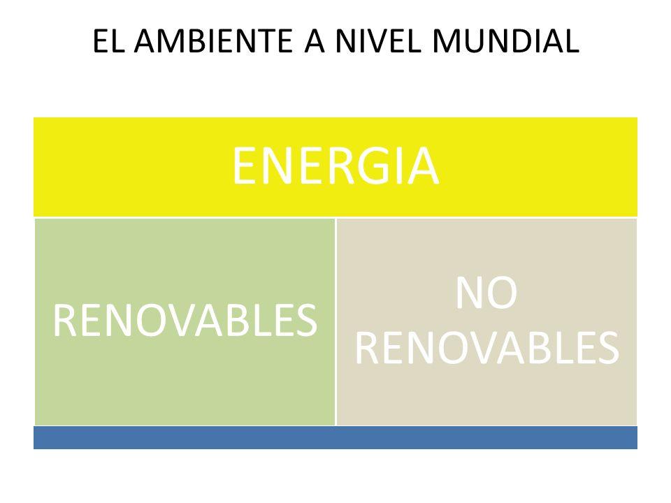 EL AMBIENTE A NIVEL MUNDIAL