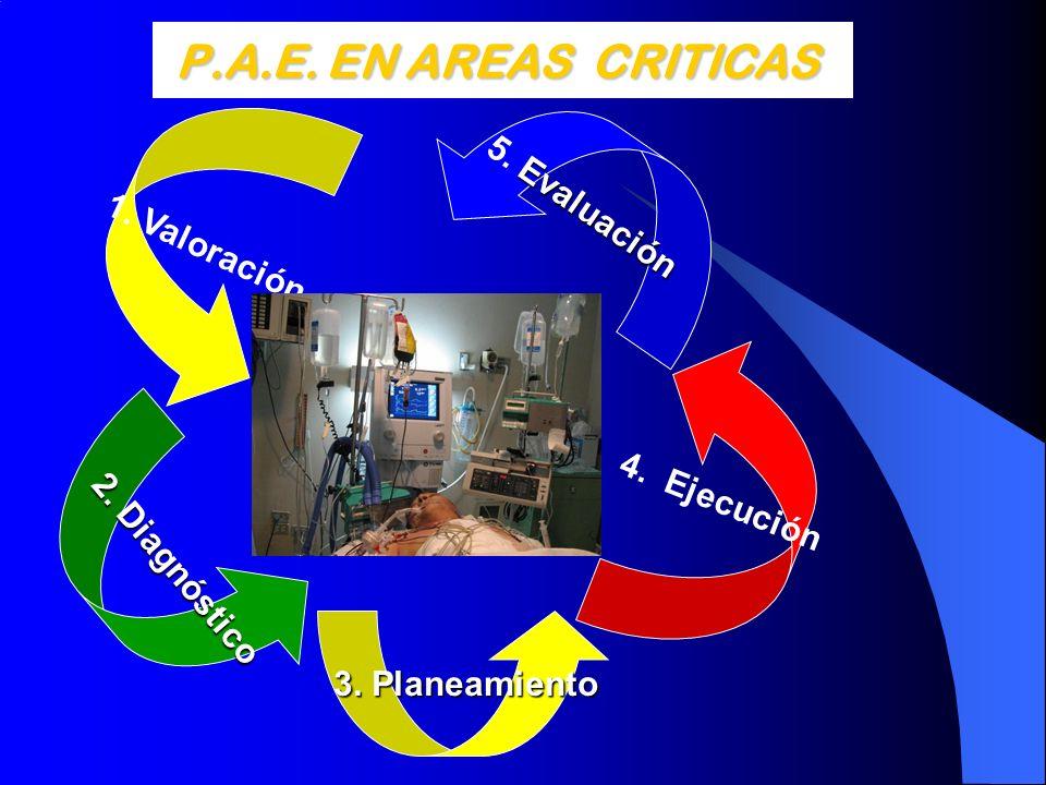 P.A.E. EN AREAS CRITICAS 5. Evaluación 1. Valoración 4. Ejecución
