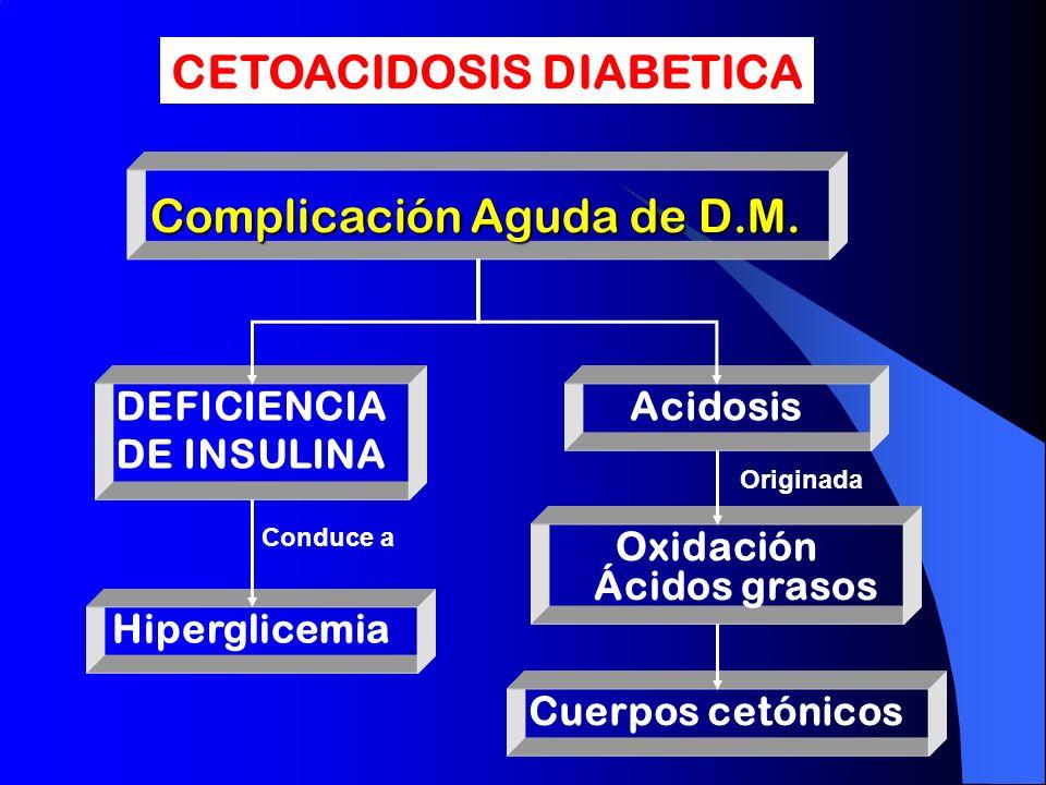 Complicación Aguda de D.M.