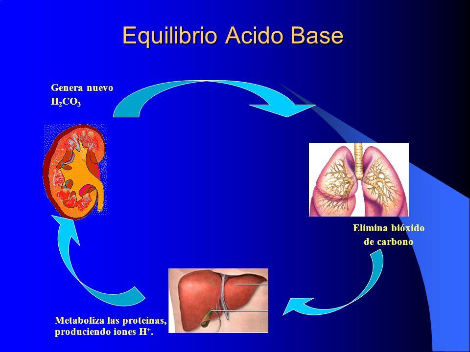 Equilibrio Acido Base Genera nuevo H2CO3 Elimina bióxido de carbono