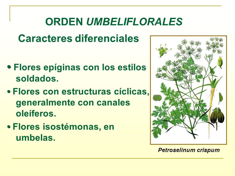 Caracteres diferenciales