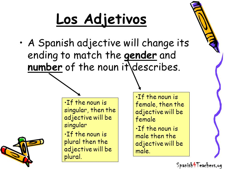 Los AdjetivosA Spanish adjective will change its ending to match the gender and number of the noun it describes.
