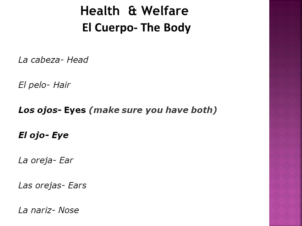 Health & Welfare El Cuerpo- The Body