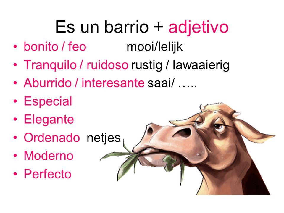 Es un barrio + adjetivo bonito / feo mooi/lelijk