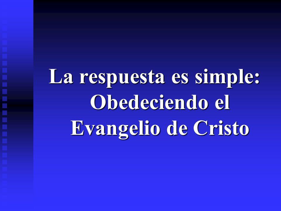La respuesta es simple: Obedeciendo el Evangelio de Cristo