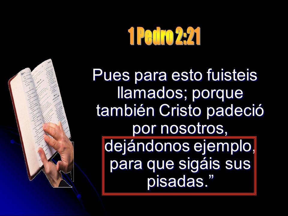 1 Pedro 2:21Pues para esto fuisteis llamados; porque también Cristo padeció por nosotros, dejándonos ejemplo, para que sigáis sus pisadas.