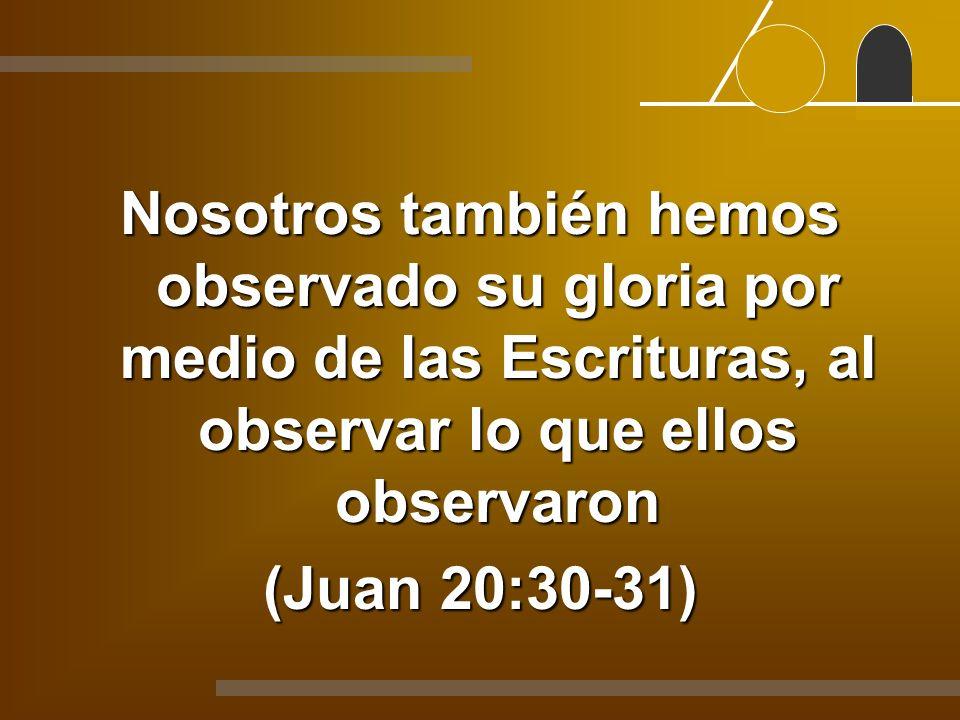 Nosotros también hemos observado su gloria por medio de las Escrituras, al observar lo que ellos observaron