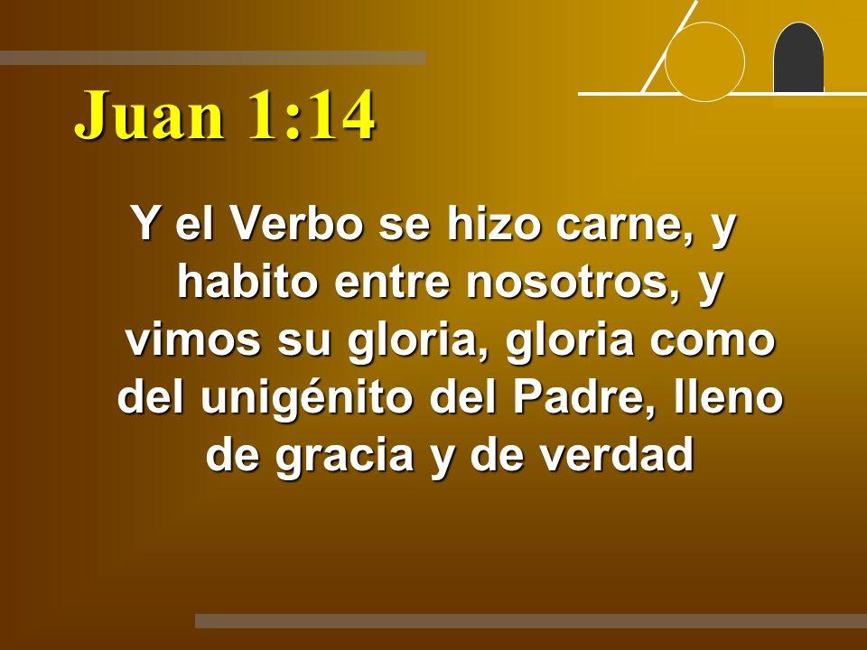 Juan 1:14 Y el Verbo se hizo carne, y habito entre nosotros, y vimos su gloria, gloria como del unigénito del Padre, lleno de gracia y de verdad.