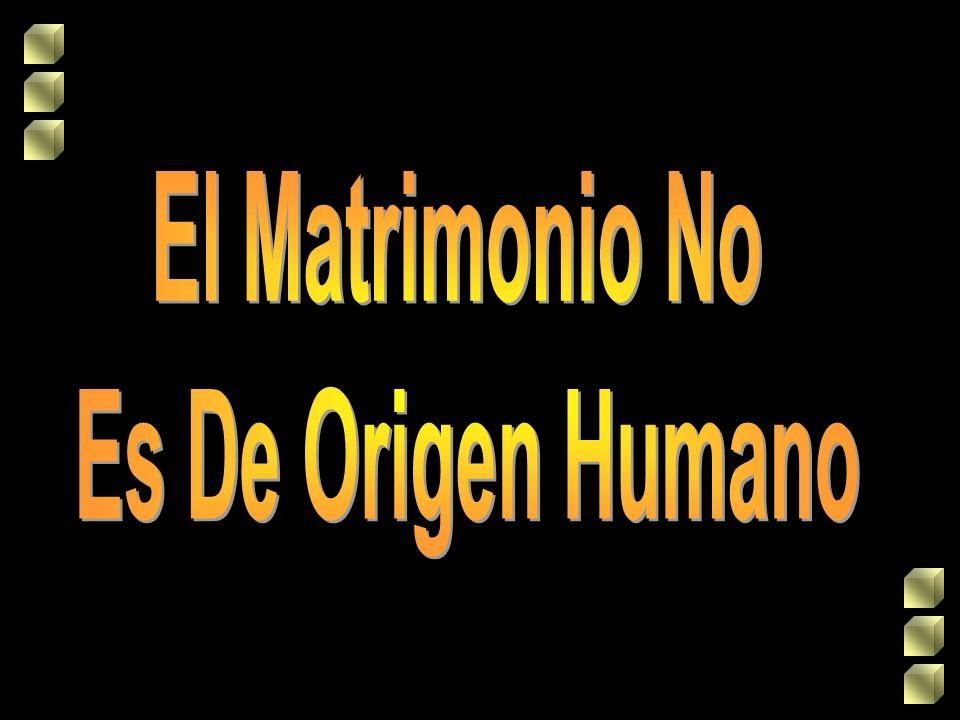 El Matrimonio No Es De Origen Humano