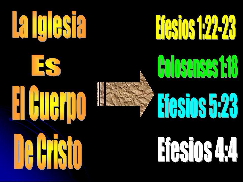 La Iglesia Efesios 1:22-23 Es Colosenses 1:18 El Cuerpo Efesios 5:23 De Cristo Efesios 4:4