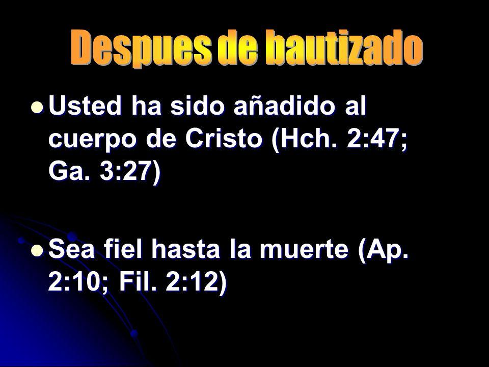 Usted ha sido añadido al cuerpo de Cristo (Hch. 2:47; Ga. 3:27)