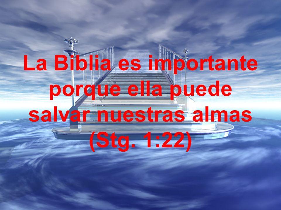 La Biblia es importante porque ella puede salvar nuestras almas (Stg