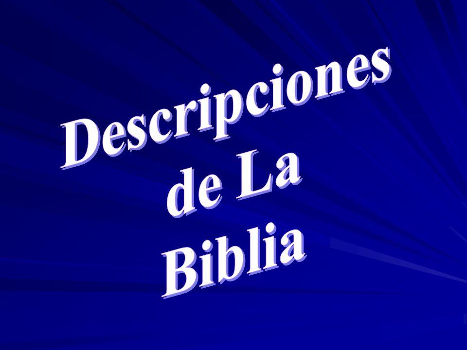 Descripciones de La Biblia