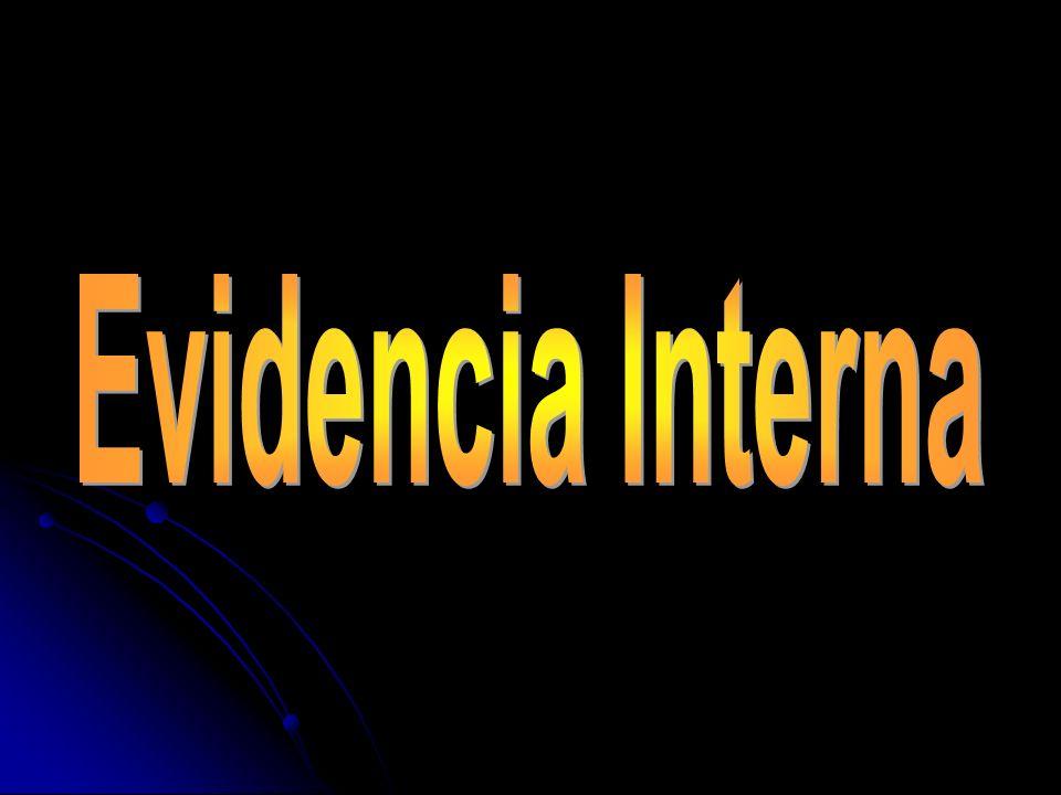 Evidencia Interna