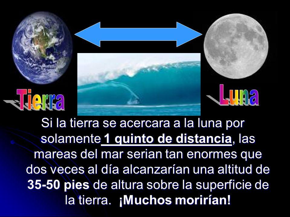 Luna Tierra.