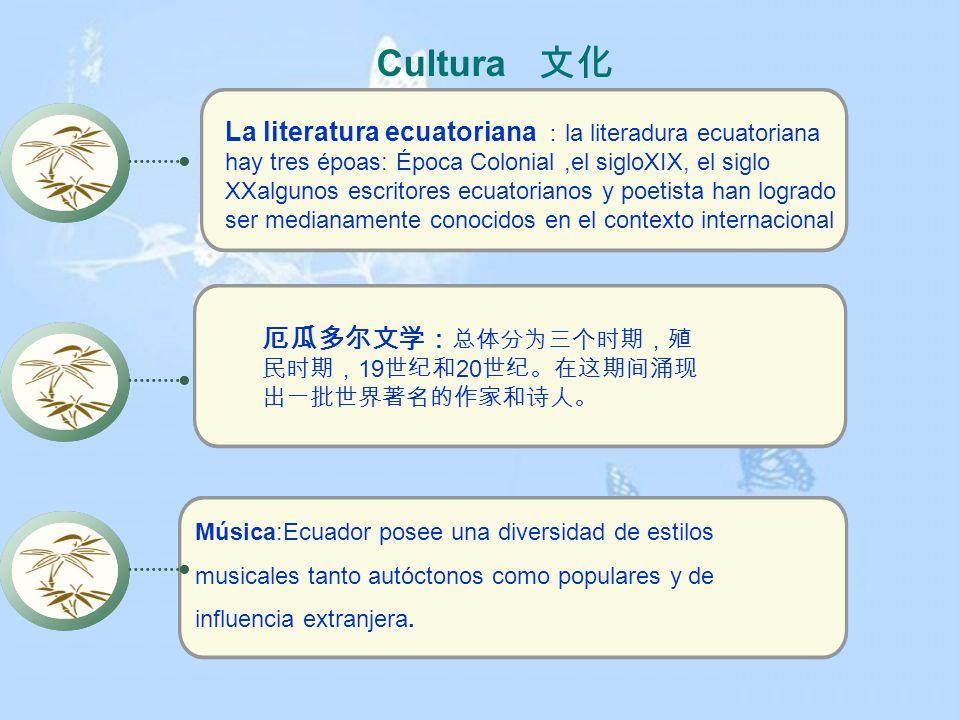 Cultura 文化