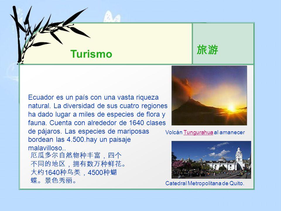 旅游 Turismo.